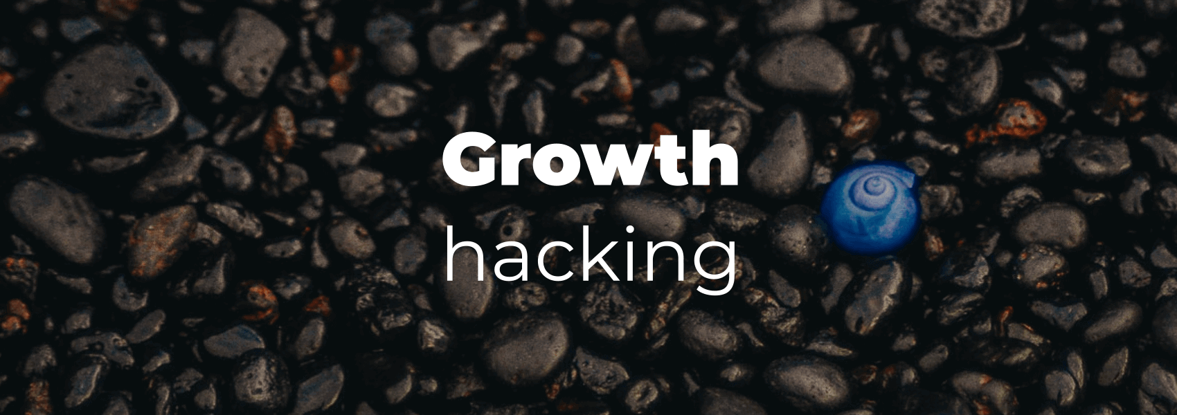 Growth hacking?