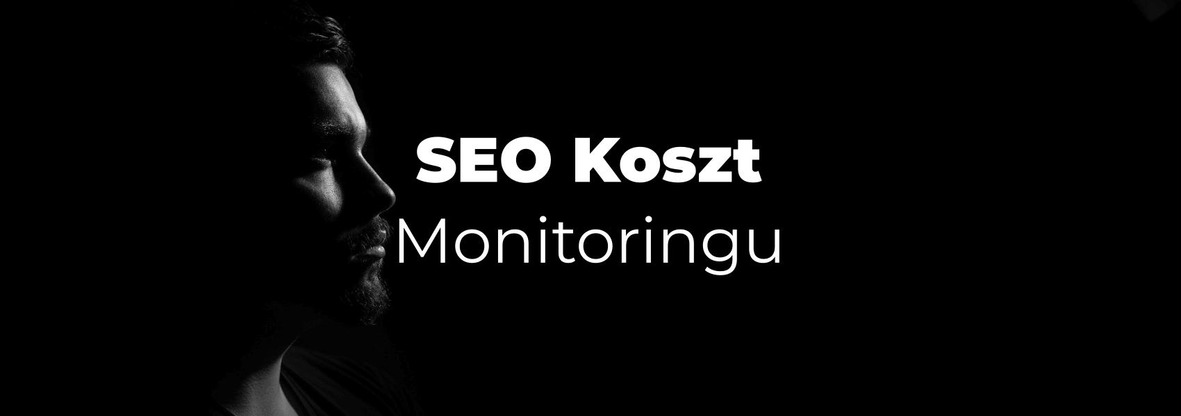 SEO-Koszt-Monitoringu
